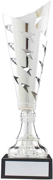 Silver Arrow Flute Trophy