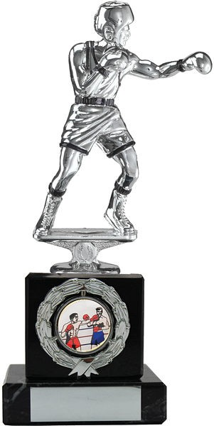 Silver Boxing Trophy