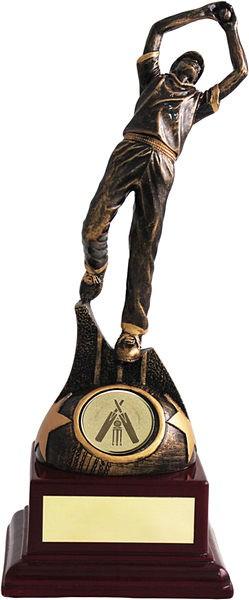 Bronze Cricket Fielder on Wood Base Trophy