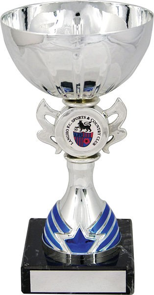 Silver Cup with Blue Trim Trophy