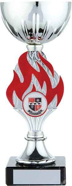 Silver Cup with Red Flame Trophy