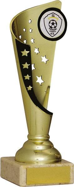 Gold and Black Star Flute Trophy