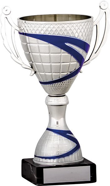 Silver Cup with Blue Stripe Detail