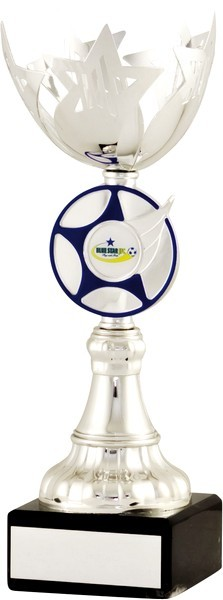 Silver / Blue Star Cup