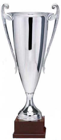 Tall Silver Fluted Cup with handles