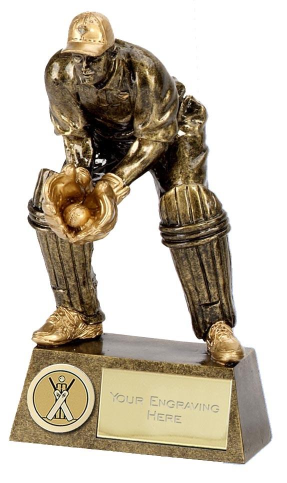 Pinnacle Cricket Trophy