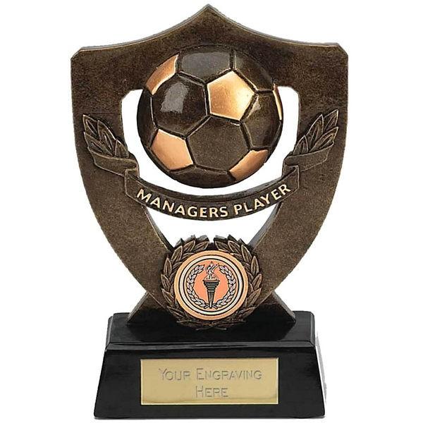 Celebration Shield Trophy