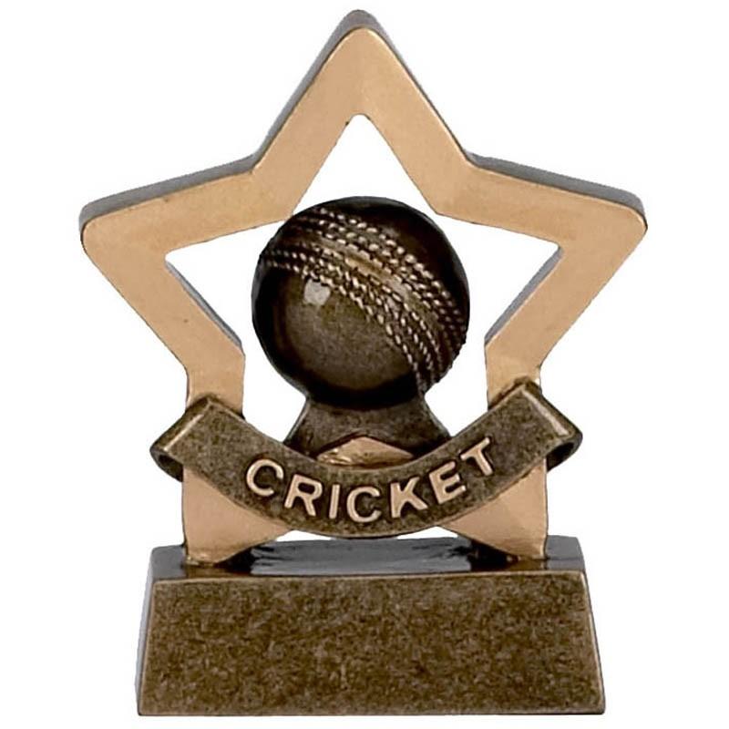 Mini Star Cricket
