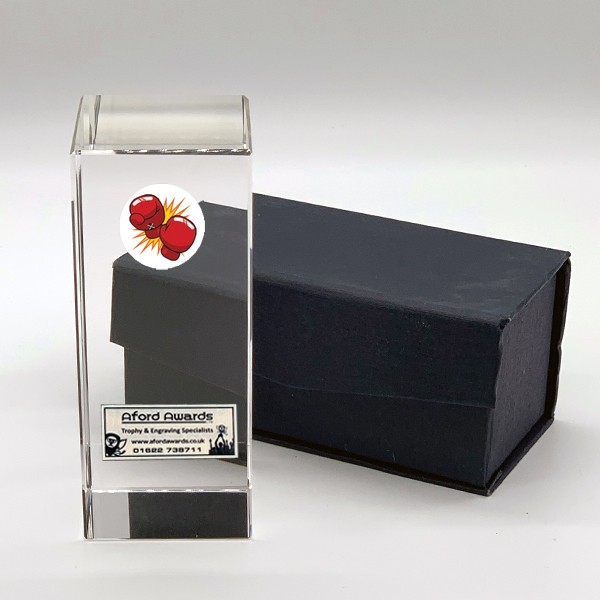 Clear Glass Block with Boxing Insert