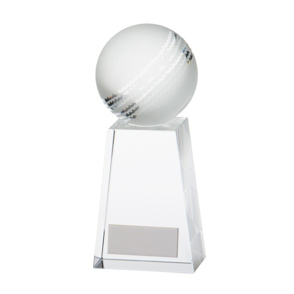 Voyager Cricket Award