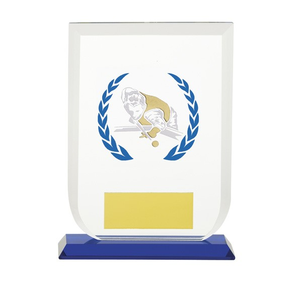 Gladiator Pool/Snooker Glass Award