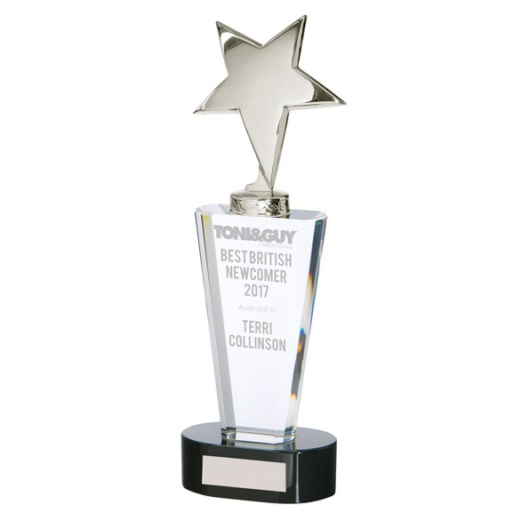 Monument Star Silver Crystal Award