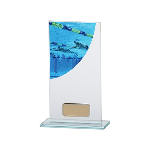 Swimming Colour-Curve Jade Crystal Award