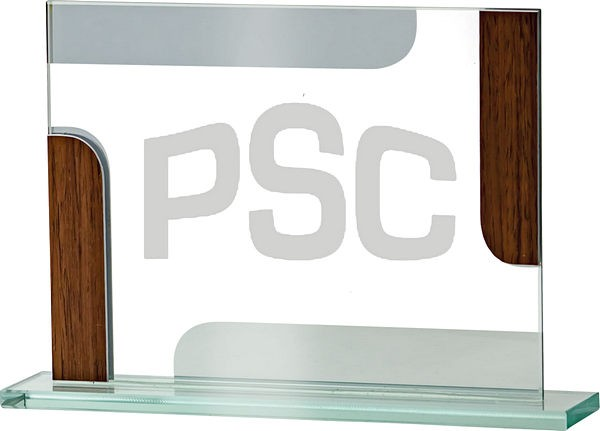 Rectangle Glass Award with Wood Detail