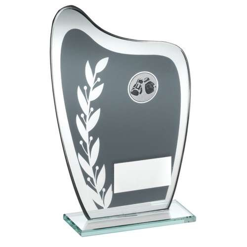 Grey/Silver Glass Plaque with Boxing Insert Trophy