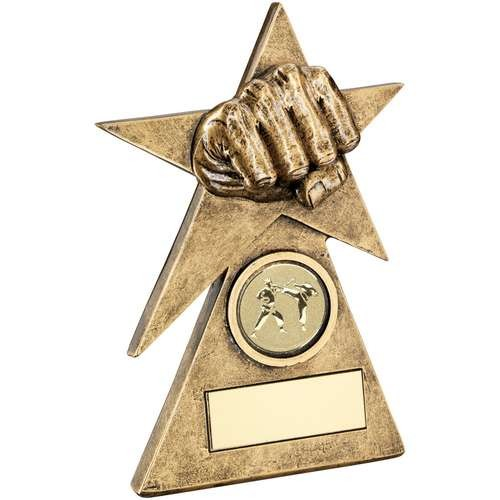Bronze/Gold Martial Arts Star on Pyramid Base Trophy