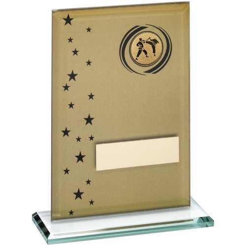 Gold/Black Printed Glass Rectangle with Martial Arts Insert Trophy