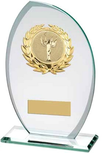 Frosted Glass Plaque With Gold Trim Trophy