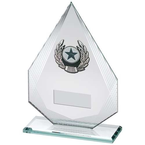 Jade/Silver Diamond Glass with Silver/Black Trim Trophy