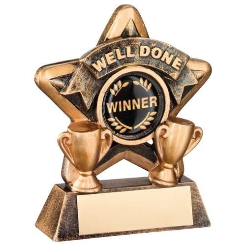 Mini Star 'Well Done' Trophy - Bronze/Gold Well Done