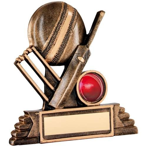Bronze/Gold Resin Cricket Trophy