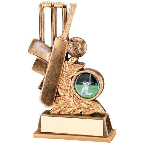 Bronze/Gold Cricket Leaf Plaque Trophy