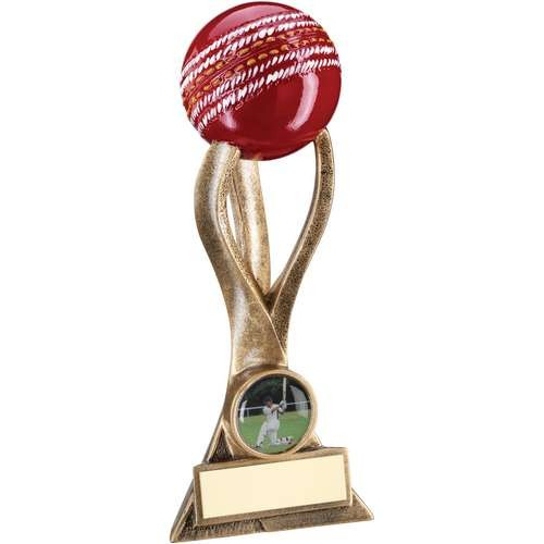 Bronze/Gold Cricket Ball on 3 Pronged Riser Trophy