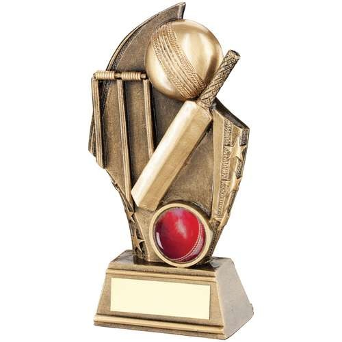 Bronze/Gold Cricket Curved Plaque Trophy