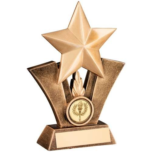 Bronze/Gold Generic Star Resin Trophy