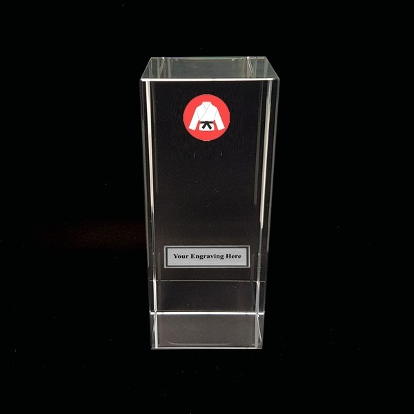 Clear Glass Block with Martial Arts Insert
