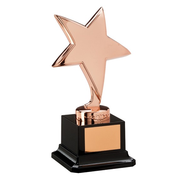 The Challenger Star Bronze Award