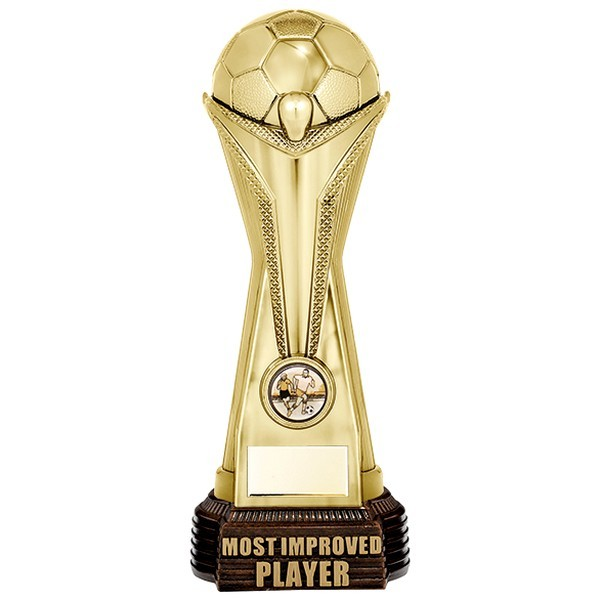 World Football Most Improved Player Gold