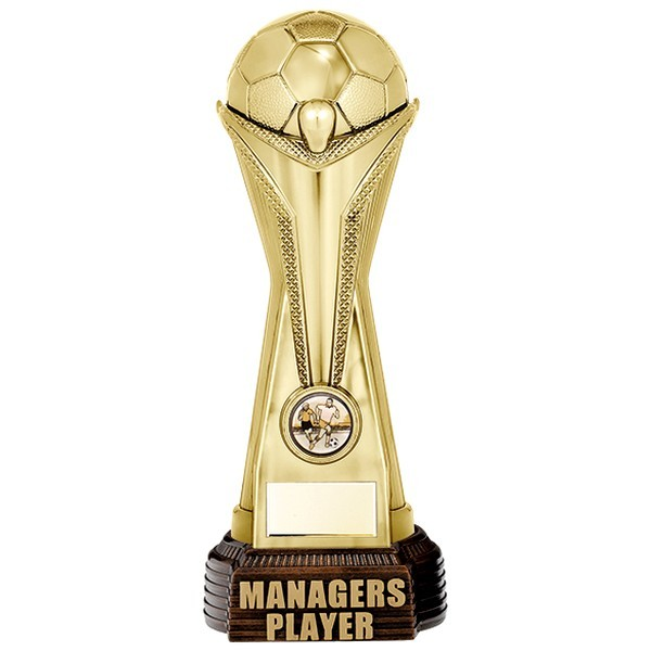 World Football Managers Player Gold