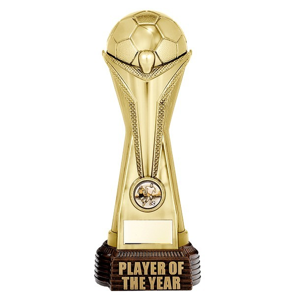 World Football Player Of The Year Gold