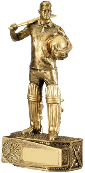 Male Cricketer Award