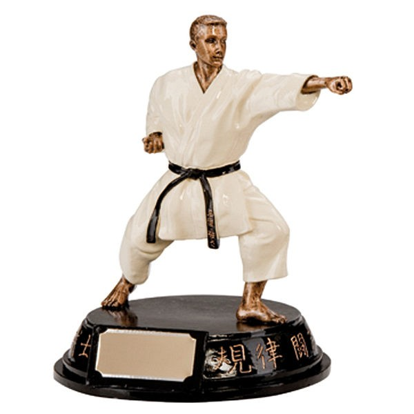 Male Motion Extreme Karate Figure