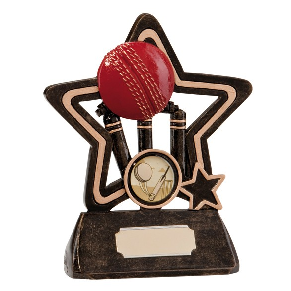 Little Star Cricket Plaque