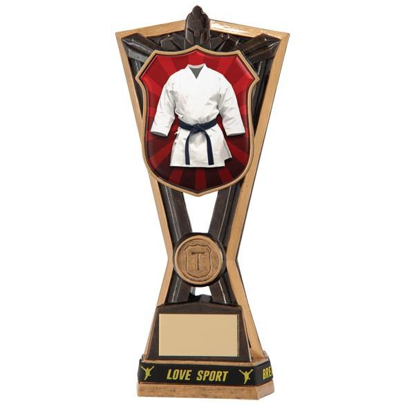 Titans Martial Arts Award & TB