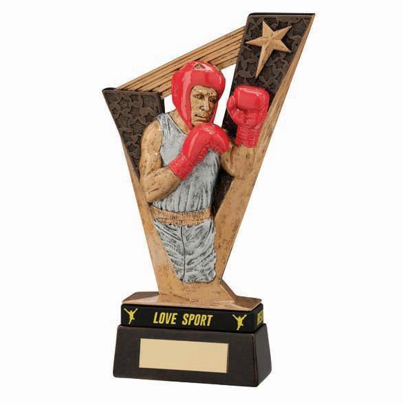 Victory Boxing Award & TB