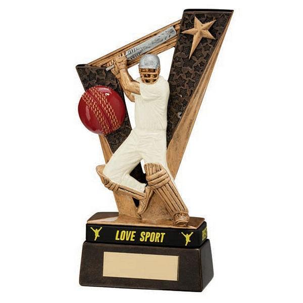 Victory Cricket Batsman Award & TB