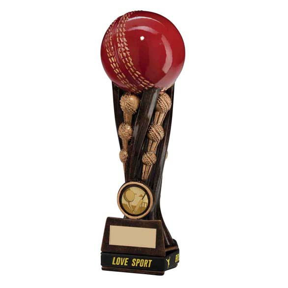 Epic Cricket Tower Award & TB