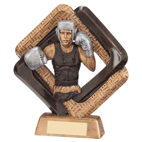 Sporting Unity Boxing Award