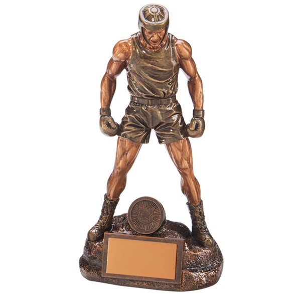 Ultimate Boxing Award