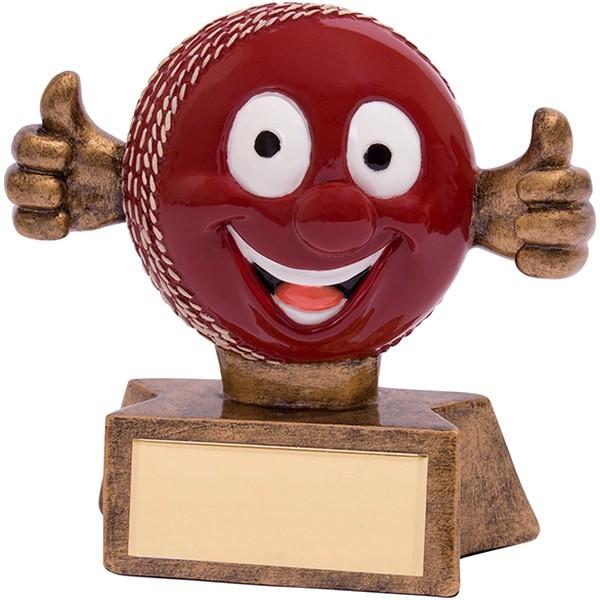 Smiler Cricket Award