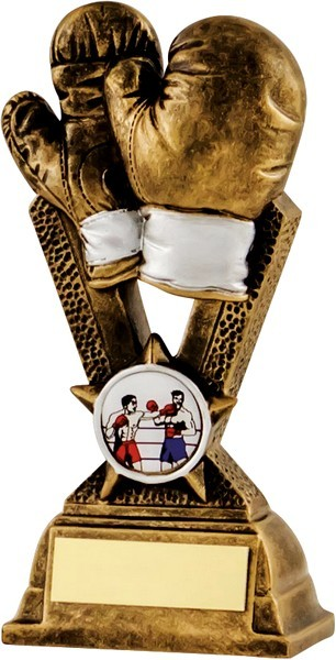 Bronze / White Boxing Trophy