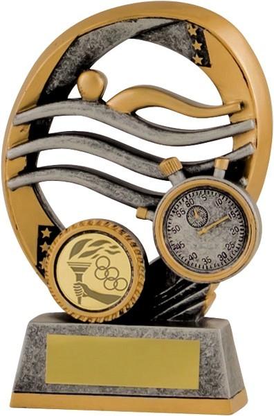 Gunmetal / Gold Swimming Trophy