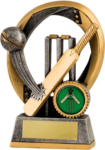Gunmetal / Gold Cricket Batting Trophy