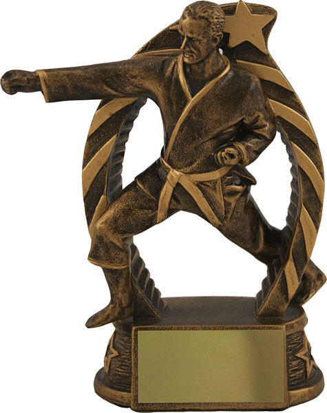 Bronze Martial Arts Trophy