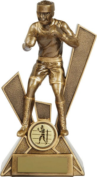 Bronze Boxing Trophy