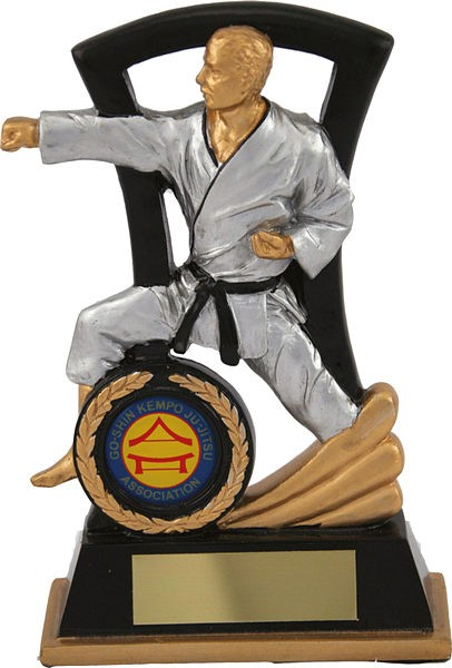 Black and Silver Martial Arts Trophy